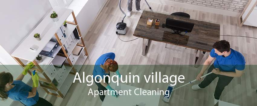 Algonquin village Apartment Cleaning