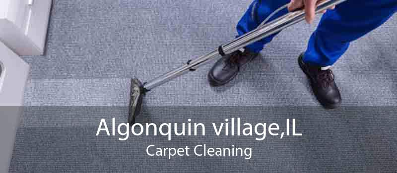 Algonquin village,IL Carpet Cleaning