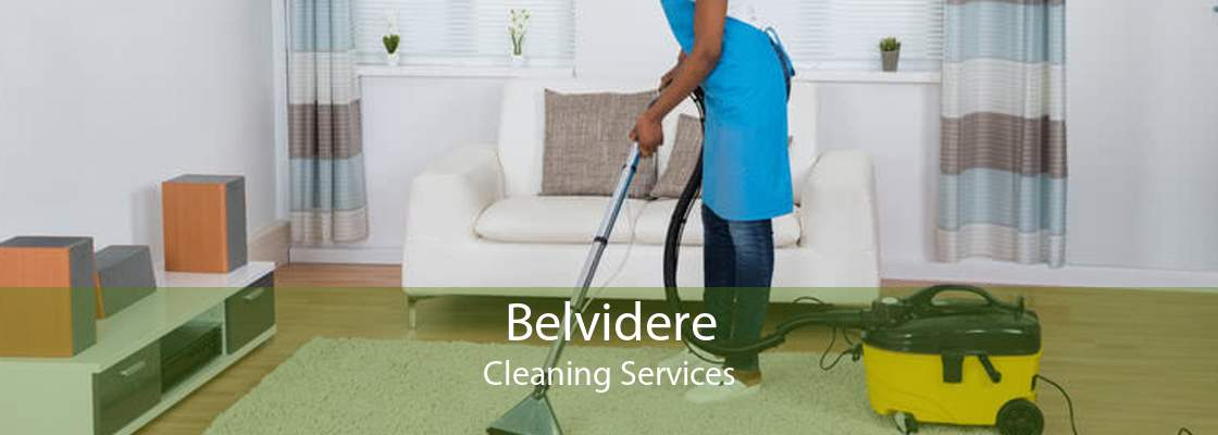 Belvidere Cleaning Services