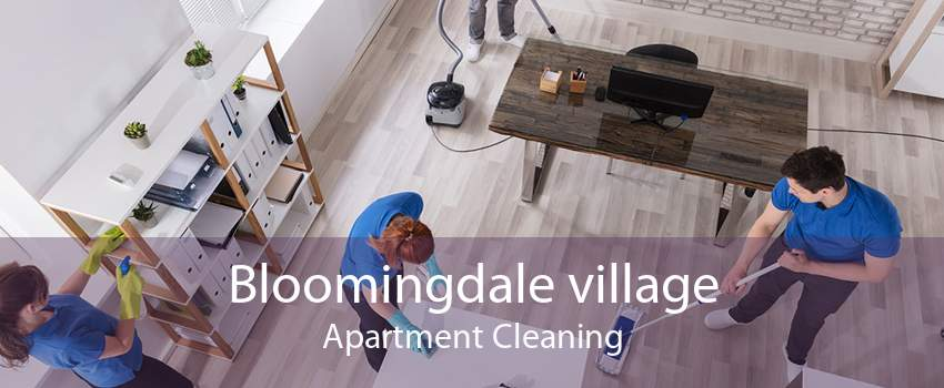 Bloomingdale village Apartment Cleaning