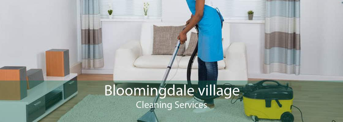 Bloomingdale village Cleaning Services