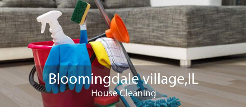 Bloomingdale village,IL House Cleaning
