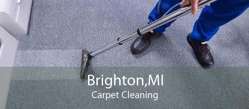 Brighton,MI Carpet Cleaning