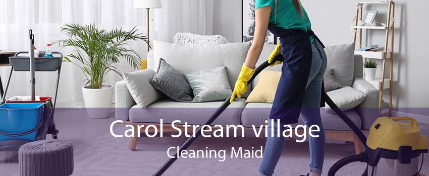 Carol Stream village Cleaning Maid