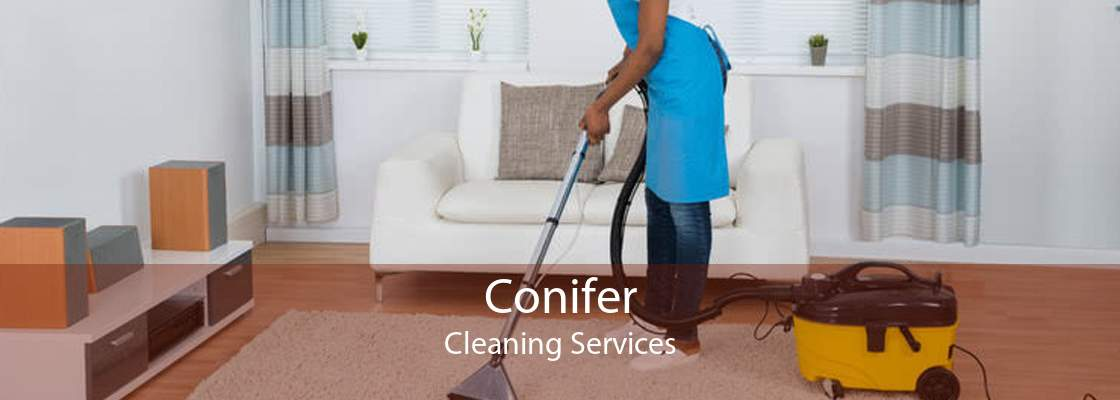 Conifer Cleaning Services