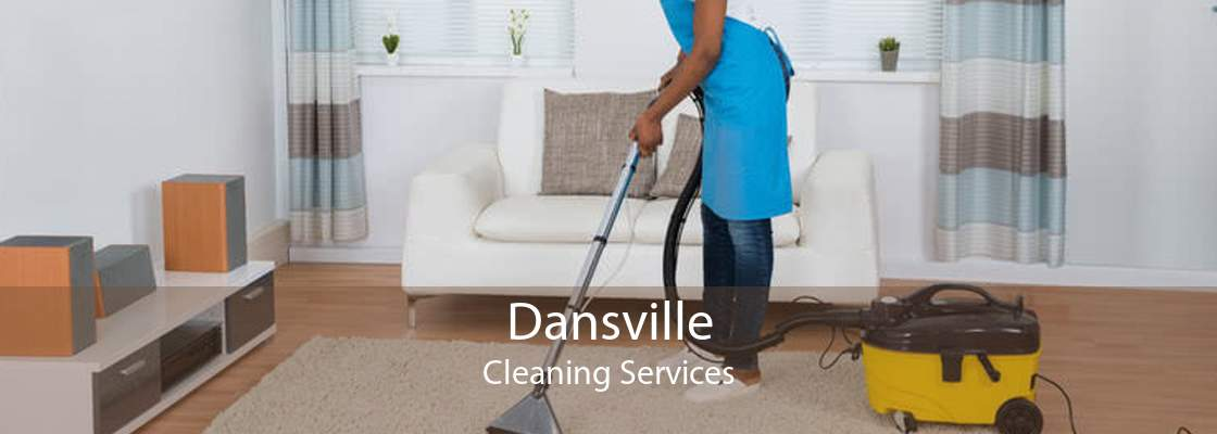 Dansville Cleaning Services