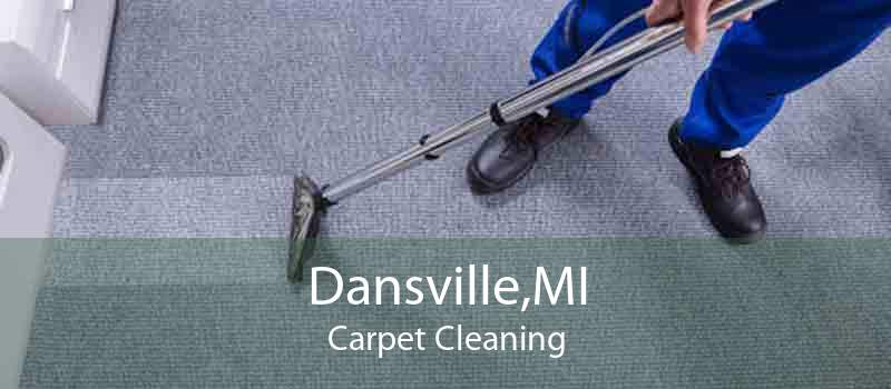 Dansville,MI Carpet Cleaning