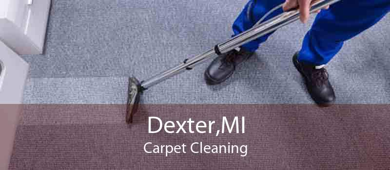 Dexter,MI Carpet Cleaning