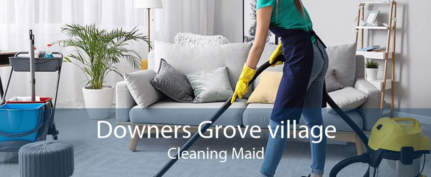 Downers Grove village Cleaning Maid
