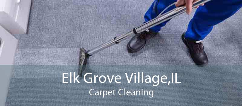 Elk Grove Village,IL Carpet Cleaning