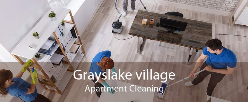 Grayslake village Apartment Cleaning