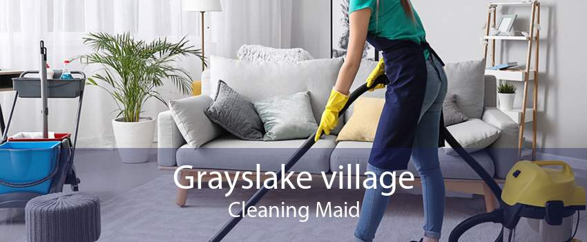 Grayslake village Cleaning Maid