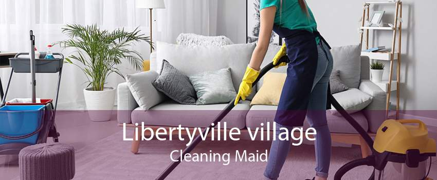 Libertyville village Cleaning Maid