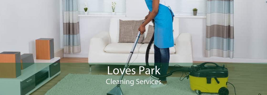 Loves Park Cleaning Services