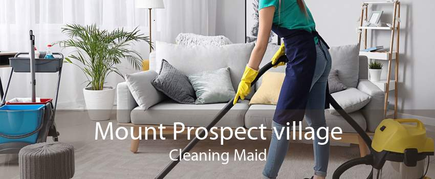 Mount Prospect village Cleaning Maid