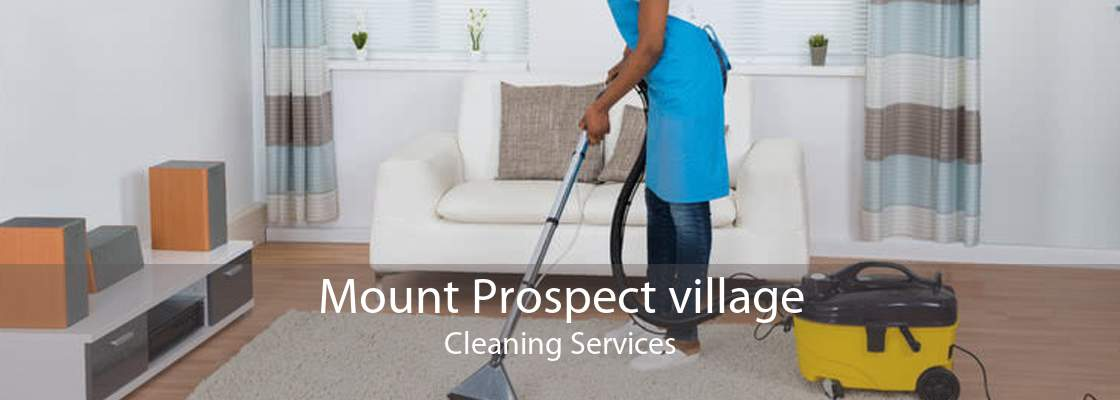 Mount Prospect village Cleaning Services