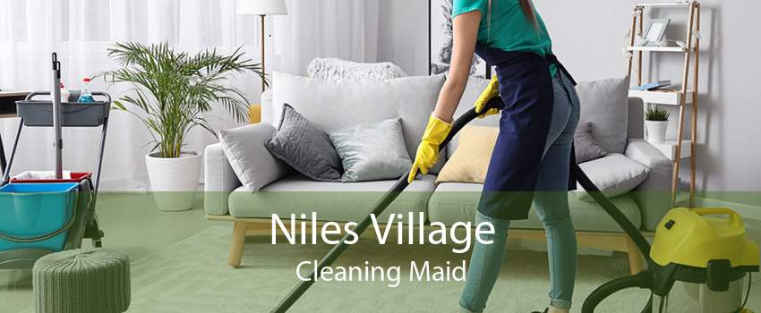 Niles Village Cleaning Maid