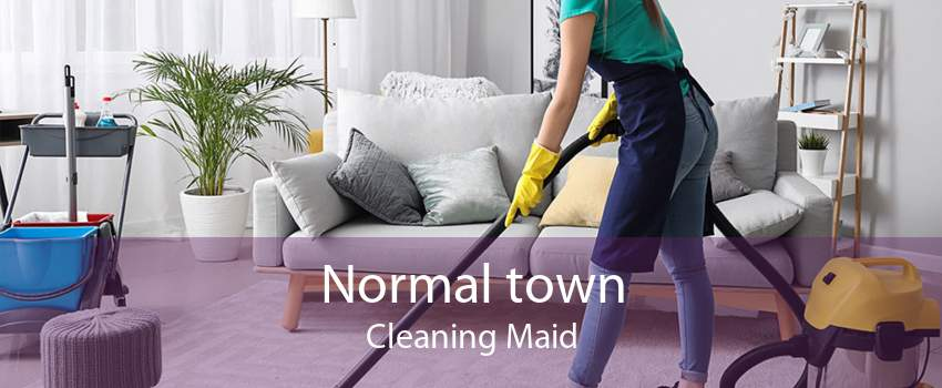 Normal town Cleaning Maid