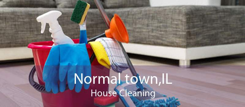 Normal town,IL House Cleaning