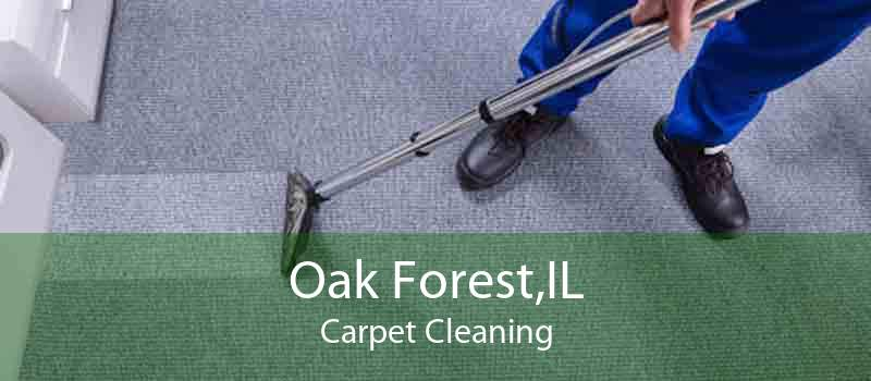 Oak Forest,IL Carpet Cleaning