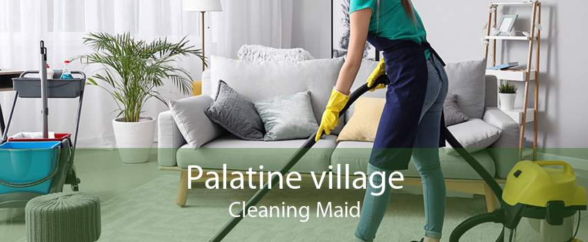 Palatine village Cleaning Maid
