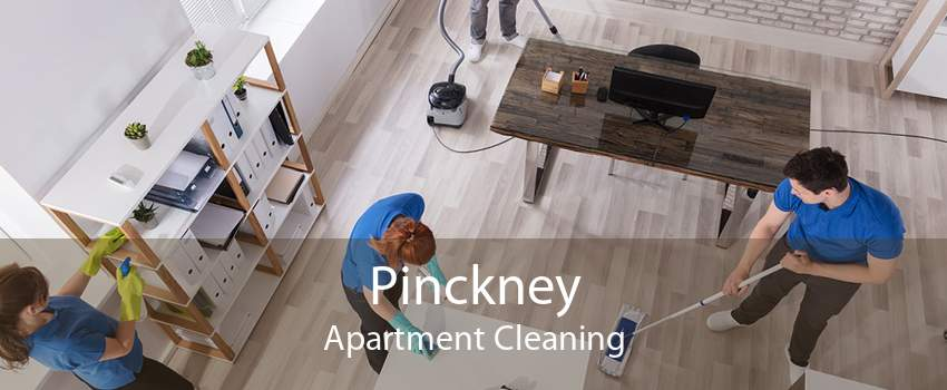 Pinckney Apartment Cleaning