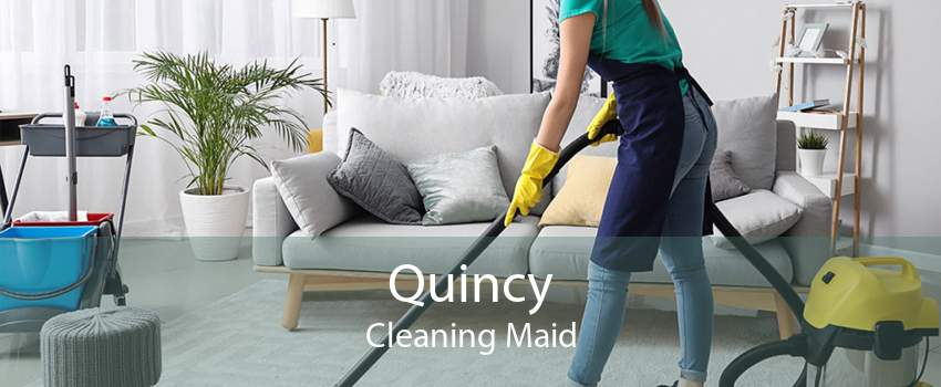 Quincy Cleaning Maid