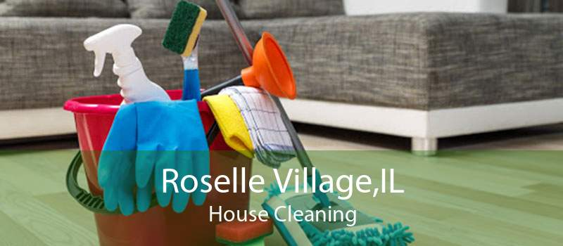 Roselle Village,IL House Cleaning