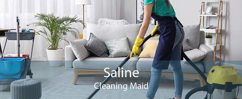 Saline Cleaning Maid