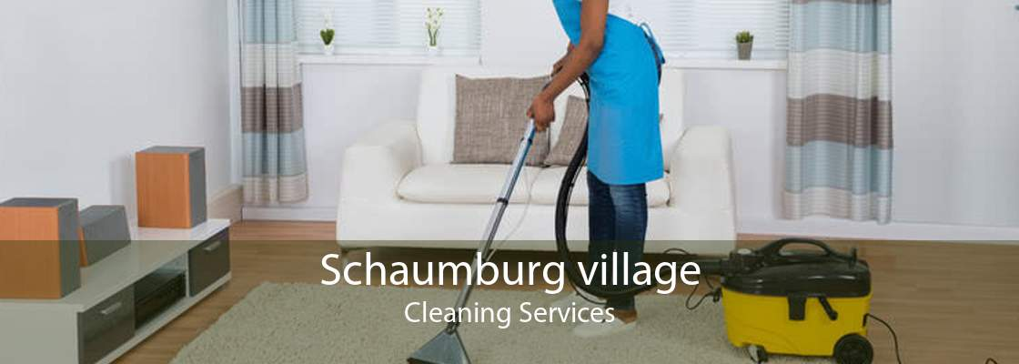 Schaumburg village Cleaning Services