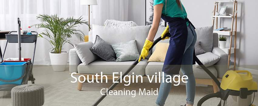South Elgin village Cleaning Maid