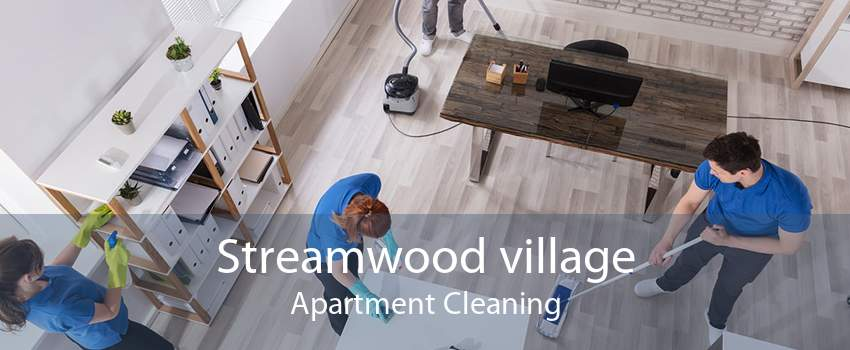 Streamwood village Apartment Cleaning