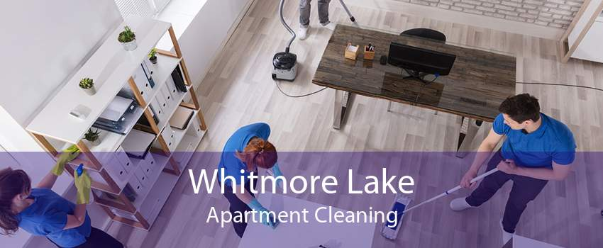 Whitmore Lake Apartment Cleaning