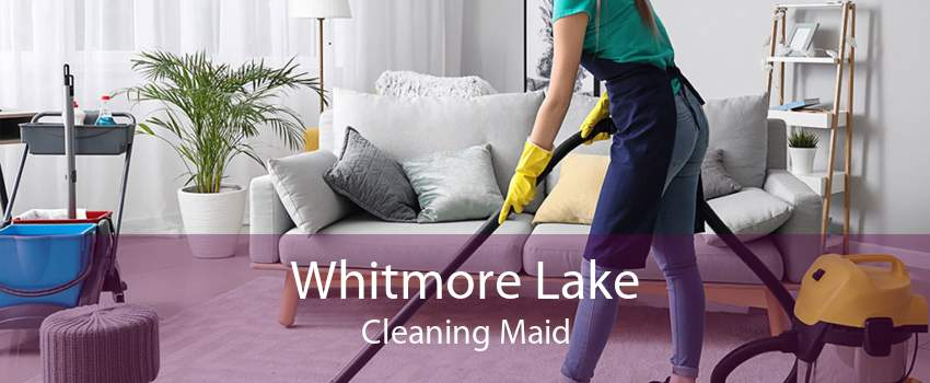 Whitmore Lake Cleaning Maid