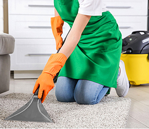 best maid cleaning service in Huntley village