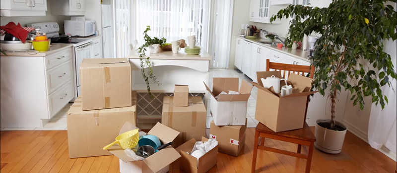 apartment move out service in Glenview village