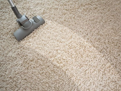 best home carpet cleaner in Pinckney
